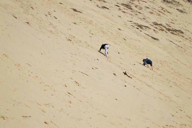 dune du pila_2.jpg