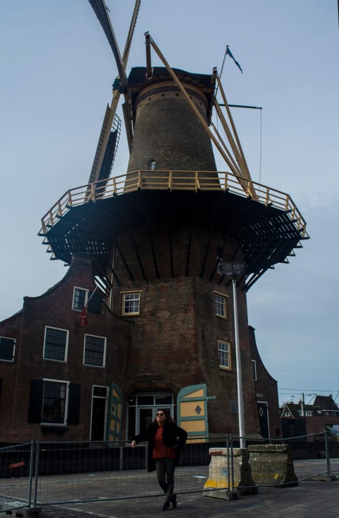 Delft2.jpg