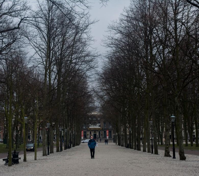 Hague1.jpg