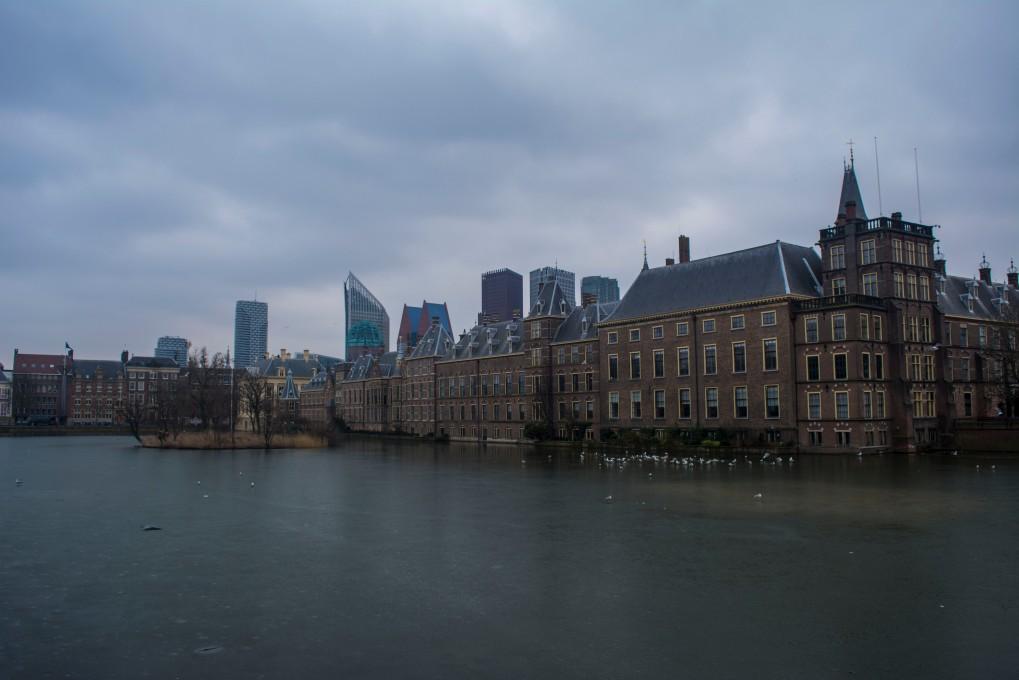 Hague2.jpg