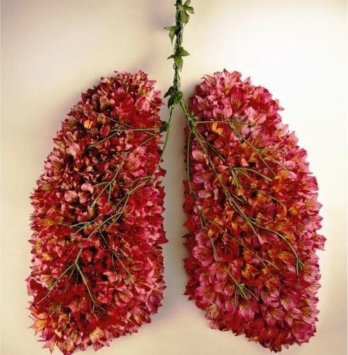 Έξυπνη μπλούζα: Καταγράφει την αναπνοή και παρακολουθεί τη λειτουργία τωνπνευμόνων